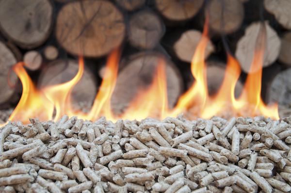 Pellet in flames